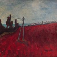 Red Field in Dajla